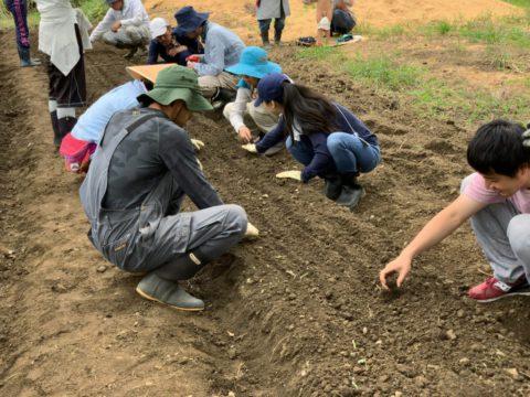 10月5日の自然栽培の会について