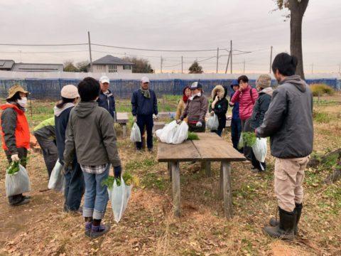 12月7日の自然栽培の会について
