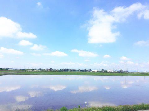 区画オーナー農業体験「田植えイベント」中止のご案内