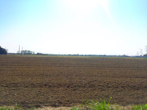 農薬がもたらす土への影響と命のかかわり