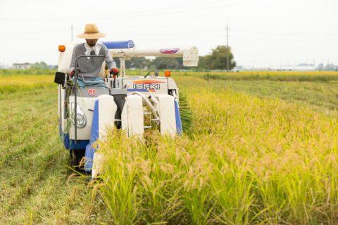 2018年収穫の漢方農法米は完売となりました
