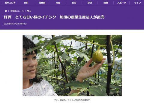 9/27東京新聞にて白いちじくをご紹介頂きました!