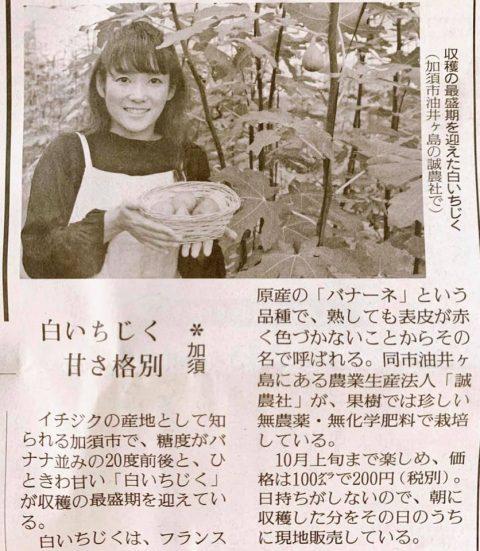 9/18読売新聞にて白いちじくをご紹介いただきました!