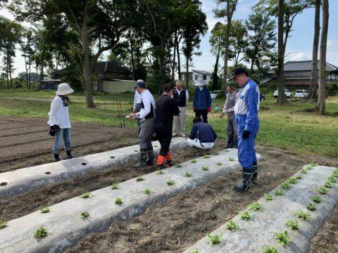 10月17日の自然栽培の会について
