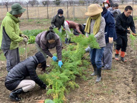 12月19日の自然栽培の会について