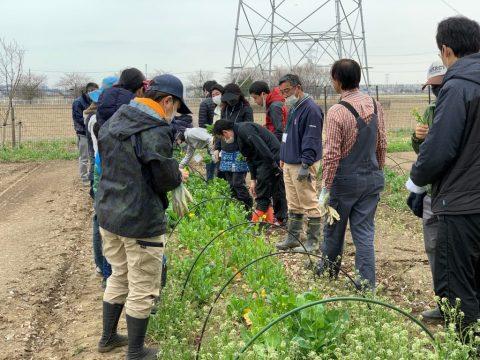 4月3日の自然栽培の会について