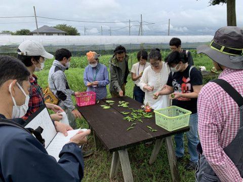 9月25日の自然栽培の会について