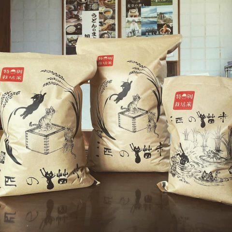三匹の猫米活動 / 米袋が完成しました(=^・^=)